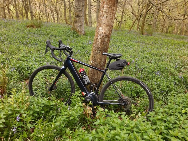Road e-Bike in Forest